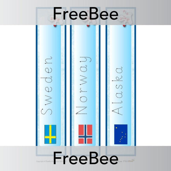 PlanBee Free Arctic Vocabulary Cards by PlanBee