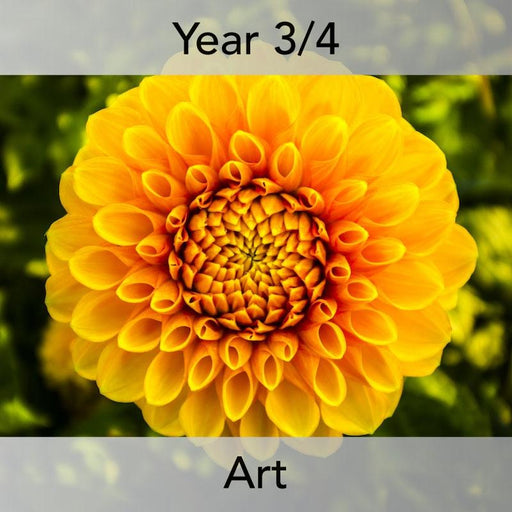 PlanBee Plant Art Lessons Year 3 & Year 4 PlanBee Art scheme of work