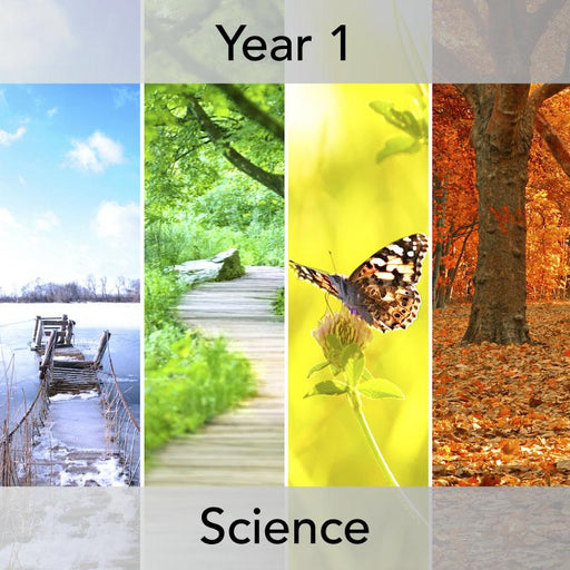 PlanBee Seasonal Changes Year 1 Science Lesson Plans for KS1