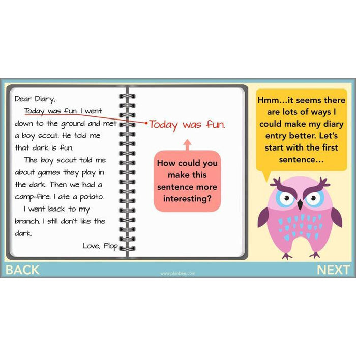 PlanBee The Owl who was Afraid of the Dark Planning for Year 3