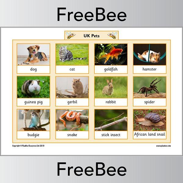 UK Animal Word Mat