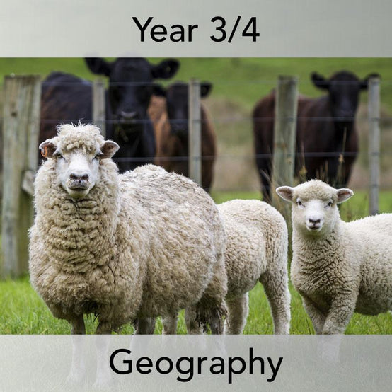 Where does our food come from? – a Year 3/4 Geography scheme of work