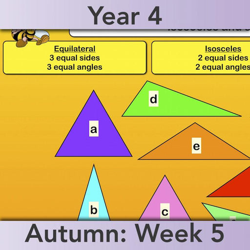 PlanBee Year 4 Properties of 2D Shapes KS2 Maths by PlanBee