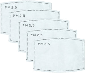 PM 2.5 FILTER SET - Replacement Filters for Fabric Mask (Set of 5) - Molly's! A Chic and Unique Boutique