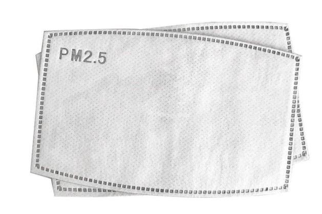 REPLACEMENT PM 2.5 Filter (Pre-order) approx. 5/30 - Molly's! A Chic and Unique Boutique