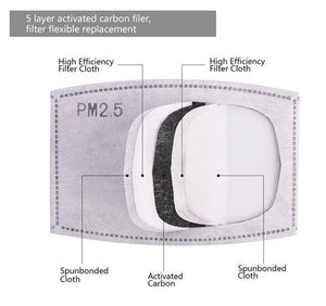 Replacement PM 2.5 Filter Pack of 6 - Molly's! A Chic and Unique Boutique