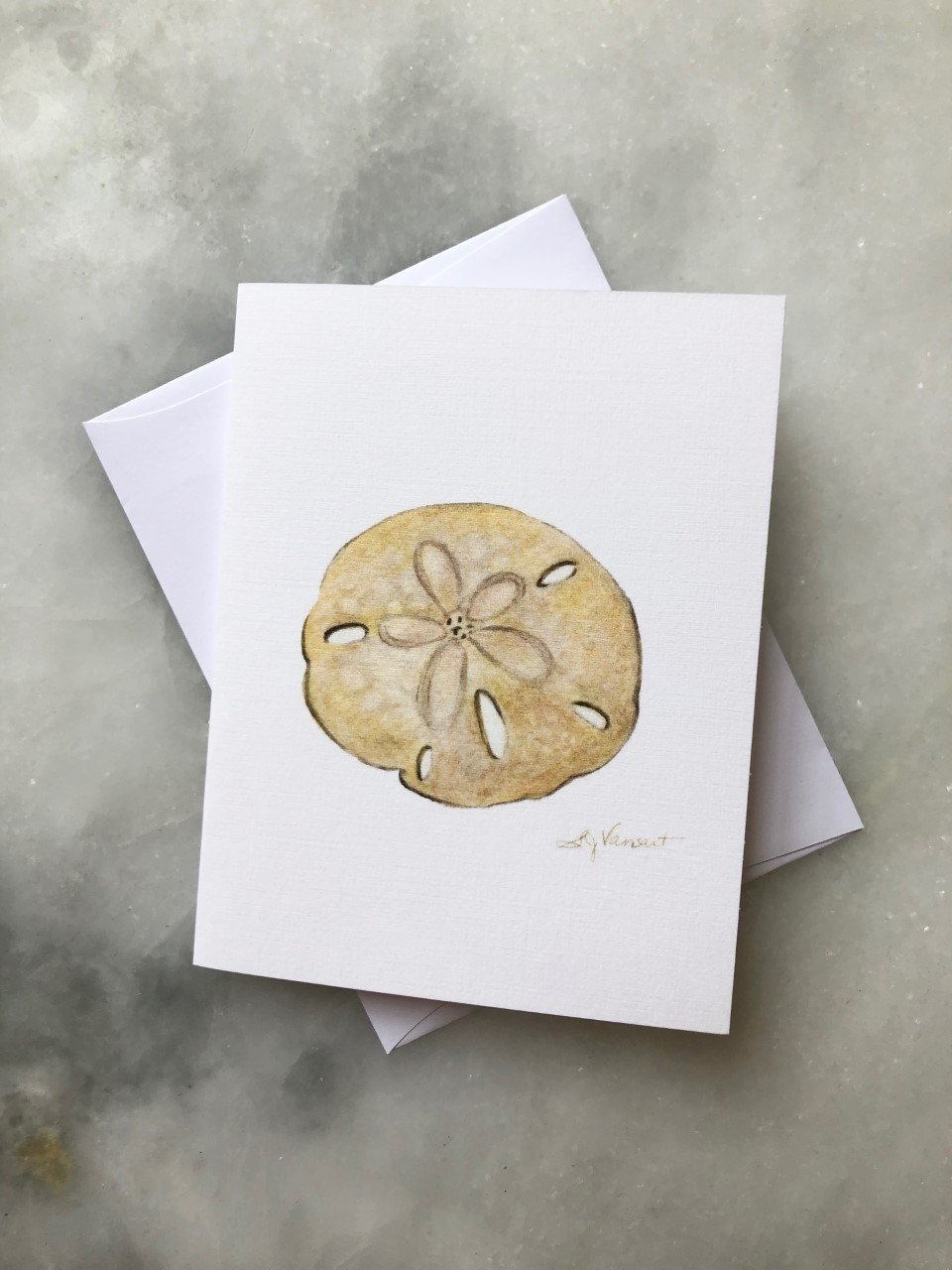 SAND DOLLAR GREETING CARD - Molly's! A Chic and Unique Boutique