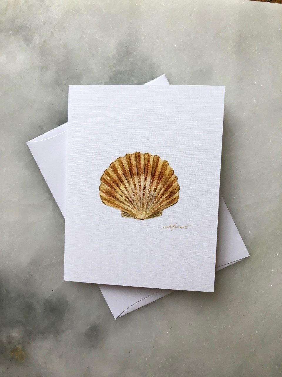 SHELL GREETING CARD - Molly's! A Chic and Unique Boutique