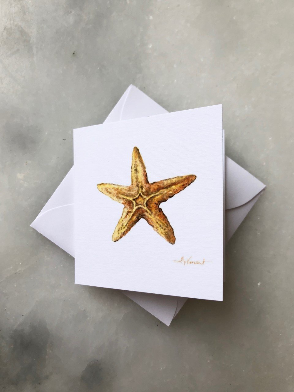STARFISH ENCLOSURE CARD - Molly's! A Chic and Unique Boutique