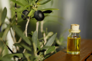 Does Olive Leaf Extract Speed Illness Recovery?