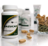 Bazucar® - Blood Sugar Balance, 60 tabs - Wellness Works