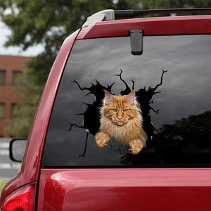 MAINE COON CRACK STICKER CATS LOVER 8