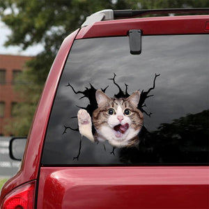 FUNNY CATS CRACK CAR STICKER CATS LOVER 3