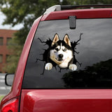 Siberian Husky Crack Car Sticker, Toilet Sticker, Fridge Sticker 13