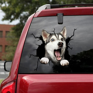 Siberian Husky Crack Car Sticker, Toilet Sticker, Fridge Sticker 26