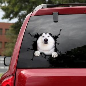 Siberian Husky Crack Car Sticker, Toilet Sticker, Fridge Sticker 19