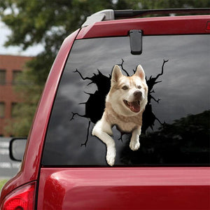 Siberian Husky Crack Car Sticker, Toilet Sticker, Fridge Sticker 22