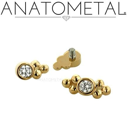 Anatometal | 18k Gold Sabrina Threadless End - Avanti Body Piercing & Fine Jewelry