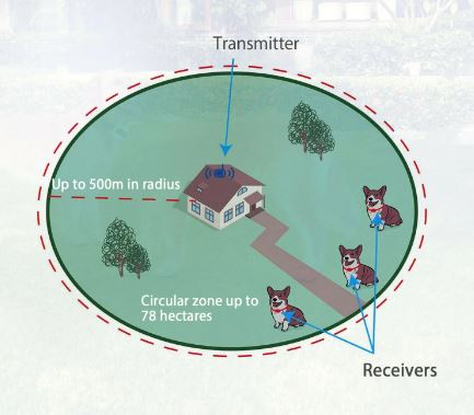 best wireless dog fence