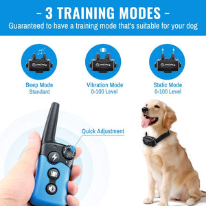 new arrival dog training collar