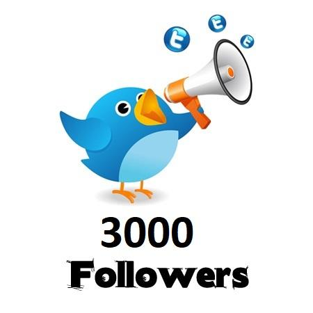 3,000 Twitter Followers