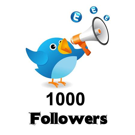 1,000 Twitter Followers Each Month
