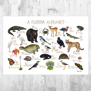 Wholesale Field Guide Art Print: A Florida Alphabet