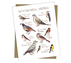 Wholesale Backyard Birds Field Guide Cards: Arizona