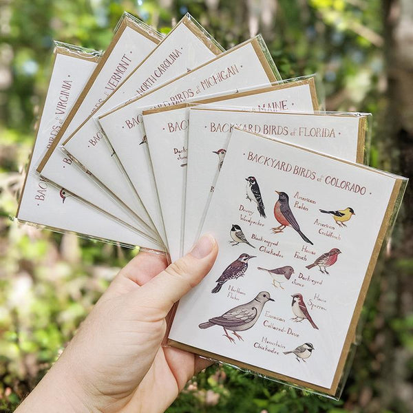 Wholesale Backyard Birds Field Guide Cards: North Dakota