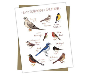 Wholesale Backyard Birds Field Guide Cards: California