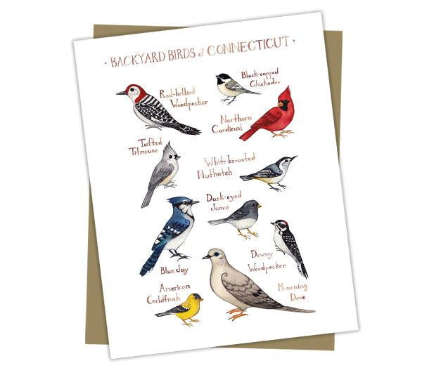 Wholesale Backyard Birds Field Guide Cards: Connecticut