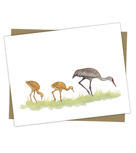 Wholesale Cards: Sandhill Crane Family Foraging