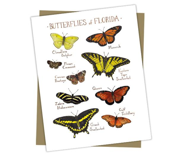 Wholesale Butterflies Field Guide Cards: Florida