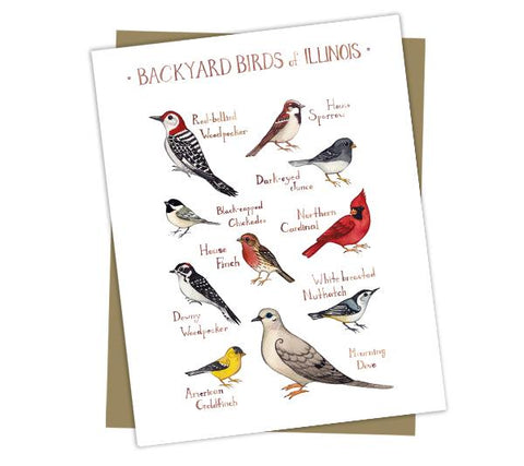 Wholesale Backyard Birds Field Guide Cards: Illinois