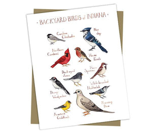 Wholesale Backyard Birds Field Guide Cards: Indiana