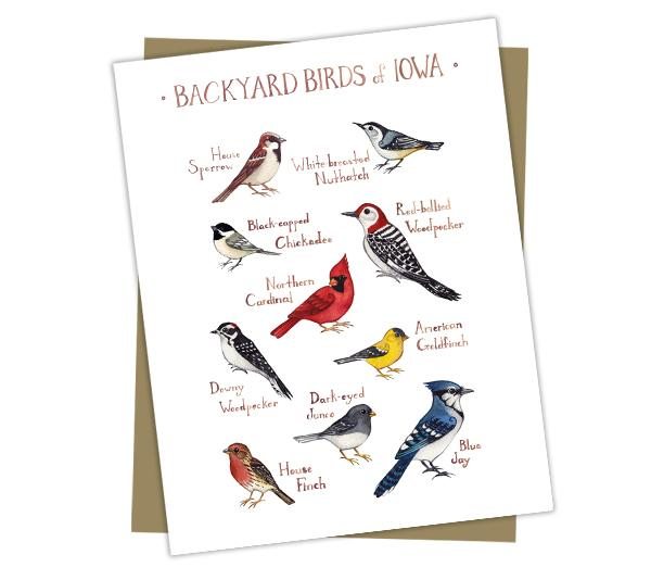 Wholesale Backyard Birds Field Guide Cards: Iowa