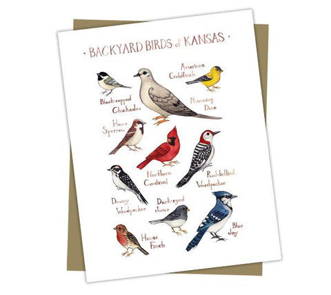 Wholesale Backyard Birds Field Guide Cards: Kansas