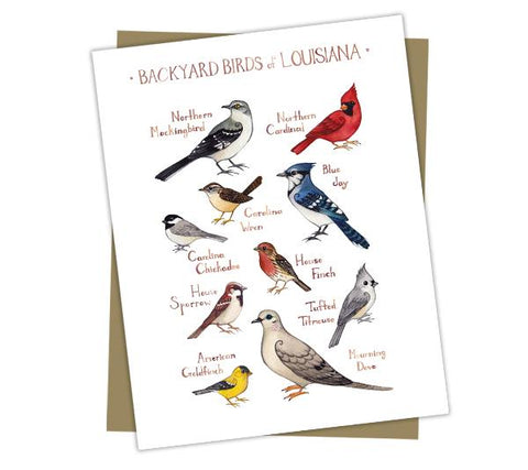 Wholesale Backyard Birds Field Guide Cards: Louisiana