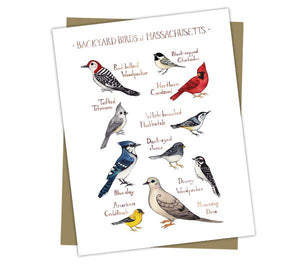 Wholesale Backyard Birds Field Guide Cards: Massachusetts