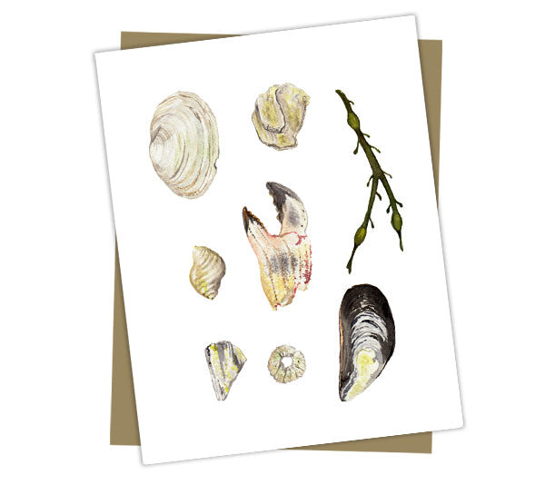 Wholesale Cards: Beach Finds (Maine)