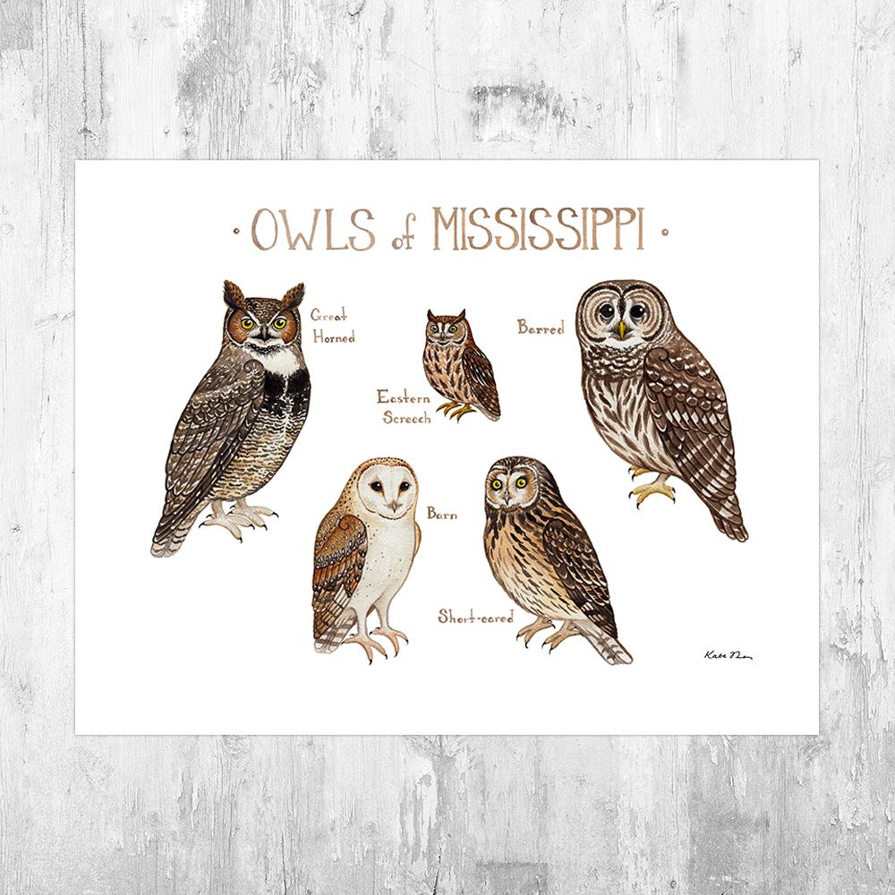 Wholesale Owls Field Guide Art Print: Mississippi