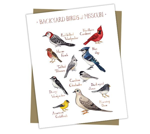 Wholesale Backyard Birds Field Guide Cards: Missouri