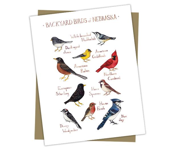 Wholesale Backyard Birds Field Guide Cards: Nebraska