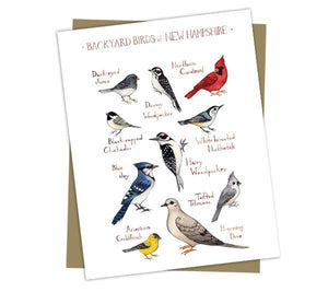 Wholesale Backyard Birds Field Guide Cards: New Hampshire
