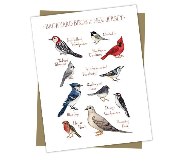Wholesale Backyard Birds Field Guide Cards: New Jersey