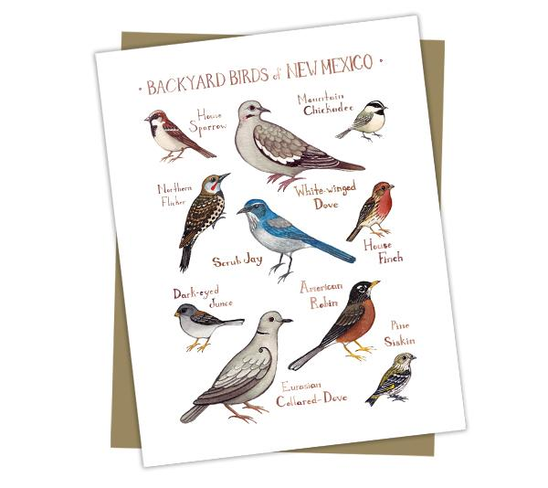 Wholesale Backyard Birds Field Guide Cards: New Mexico