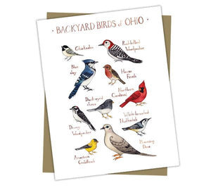 Wholesale Backyard Birds Field Guide Cards: Ohio