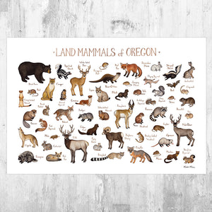 Wholesale Mammals Field Guide Art Print: Oregon