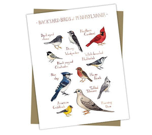 Wholesale Backyard Birds Field Guide Cards: Pennsylvania