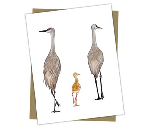 Wholesale Cards: Sandhill Crane Family